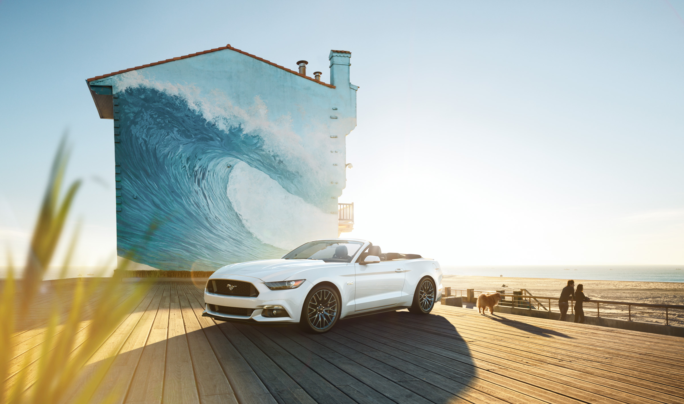 ford_mustang_uli_heckmann_france_01